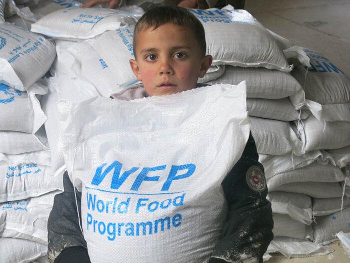 مساعدات البرنامج الغذائية