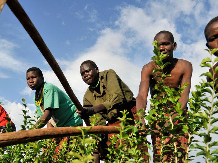 مزارعون