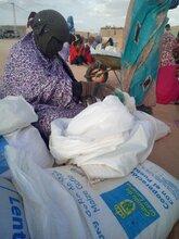 جزيرة جران كناريا تجدد دعمها للاجئين الصحراويين في الجزائر