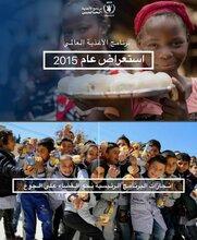 استعراض عام 2015 لعمل برنامج الأغذية العالمي