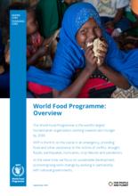 برنامج الأغذية العالمي-نظرة عامة 2019