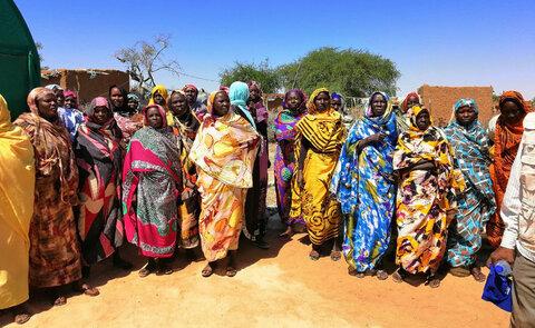 زراعة النباتات بدون تربة في السودان